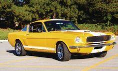 1966 Custom GT Fastback