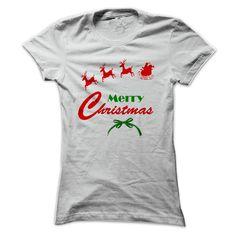 Merry Christmas Santa and His Sleigh