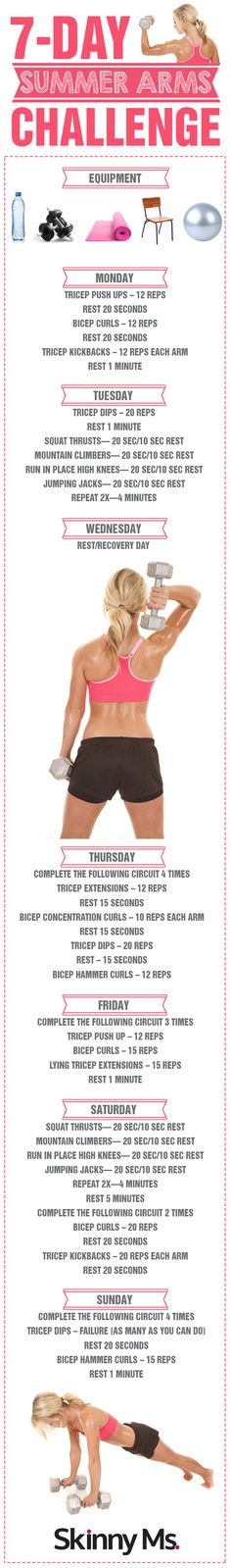 Arms Challenge - Seven Day Arm Workout Routine for Women 7 Day Summer Arms Challenge - there is no better time to get those beautifully toned and defined Day Summer Arms Challenge - there is no better time to get those beautifully toned and defined arms! Fitness Motivation, Fitness Diet, Health Fitness, Lifting Motivation, Fitness Plan, Arm Challenge, Workout Challenge, Workout Plans, Challenge Accepted