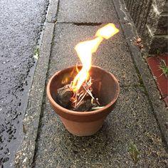 お盆ですね。 じいちゃんと、迎え火を焚きました。 日本列島のような火ですね(^.^;