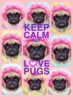 KEEP CALM AND LOVE PUGS #Cheeze