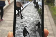 AR Platform Gives Directions By Having People Follow Penguins - PSFK