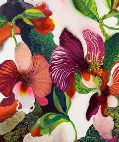 Thierry Feuz   True Technicolour Beauty | inspiration