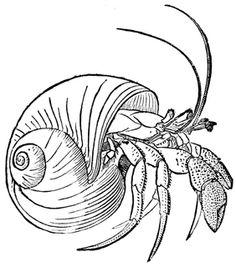 Back lower crab Tattoo spank