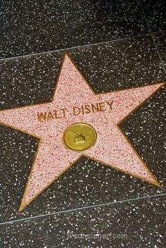 sidewalk stars | ... Fame, Celebrity Stars, Sidewalk, celebrity's, highlight, Walk of Stars