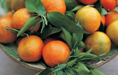 The Skinny on... Oranges  There's way more to oranges than just juice. Brighten a winter day — or any day — with the vast variety of oranges.