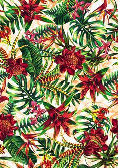 pattern, flowers for Holiday Motif Tropical, Tropical Pattern, Tropical Art, Tropical Flowers, Floral Illustrations, Illustrations And Posters, Print Wallpaper, Pattern Wallpaper, Motif Floral