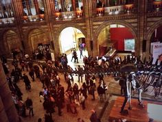 Twitter / dcodera: Science Uncovered @NHM_London ...