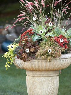 Birdbath, what a GREAT idea for my plot in the Community Garden!  LOVE!