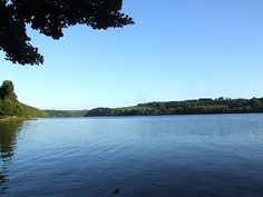 Winnow Campsite - Foraging courses in Cornwall Sup Paddle, Holiday Accommodation, Campsite, Cornwall, Places To Visit, Tours, River, Adventure, Outdoor
