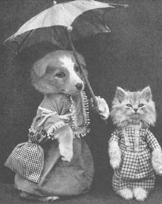 Vintage Cat And Dog