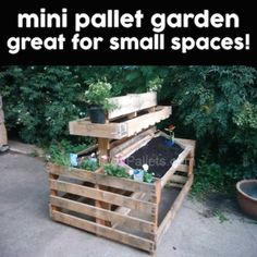 Mini Pallet Garden. Great for those of us without a lot of space!