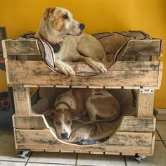 It is a bunk dog bed for two dogs made from recycled wood. The wood is unfinished without paint, stain or putty to keep it safe for fur babies. Each bed is made to order. The bed can be made more or less large depending on the breed of your dogs and sizes Dog Bunk Beds, Pallet Dog Beds, Pet Beds, Diy Dog Bed, Large Dog Bed Diy, Wood Dog Bed, Large Dog House, Dog Furniture, Cheap Furniture