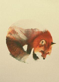 Retratos fantásticos em dupla exposição misturam animais e paisagens