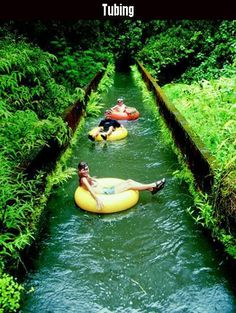 I missed this on my first trip to Kaua'i (the most amazing of the Hawaiin Islands! From last pinner: Inner tubing tour through the canals and tunnels of an old sugar plantation in Hawaii. (it's on Kaua'i) Oh The Places You'll Go, Places To Travel, Travel Destinations, Places To Visit, Travel Things, Travel Stuff, Mahalo Hawaii, Kauai Hawaii, Hawaii Usa