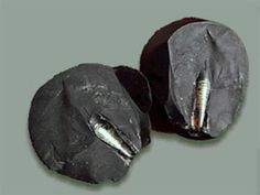 Found by rock collector Zhilin Wang in the Mazong Mountains of China, the hard black rock has embedded within it a metal rod of unknown origin and purpose. The rod has screw-like threads, suggested that it is a manufactured item, yet the fact that it was in the ground long enough for hard rock to form around it means that it must be millions of years old.