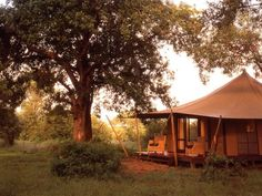 Ngala Tented Camp, #Kruger, #SouthAfrica. Underneath the shade of big trees your tent will stay comfortably cool.