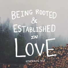And I pray that you, being rooted and established in love, may have power, together with all the Lord's holy people, to grasp how wide and long and high and deep is the love of Christ, and to know this love that surpasses knowledge—that you may be filled to the measure of all the fullness of God. (Ephesians 3:17b-19 NIV)
