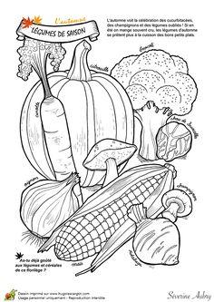 Dessin à colorier un automne de rêve, les légumes de saison - Hugolescargot.com Coloring Pages Nature, Garden Coloring Pages, Coloring Pages For Kids, Food Coloring, Coloring Books, Black And White Drawing, Black White, Different Vegetables, Fruit Art