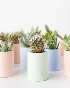 Feeling these pastel plant vibes tonight before I head off to dreamland. Search plaster planters on the blog for the tutorial. #pastellover //  by @ameliamariel