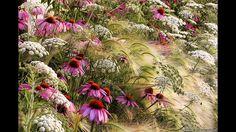 Rosanna Castrini - El jardín de mi pradera - ganadora de la competición internaci9onal Fotografía de Jardines del Año