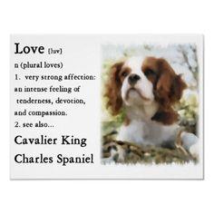 Cavaliers do mean LOVE!