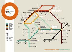 LONDON TUBE MAP WINE GUIDE TO LAUNCH