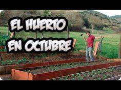 El Huerto En Octubre Otoño    Paseo Por El Huerto    La Huertina De Toni