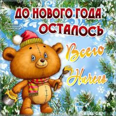 до Нового Года, всего ничего Bear Images, Bear Cartoon, Happy New Year, Teddy Bear, Positivity, Humor, Christmas, Cards, Xmas