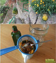 aceite de caléndula Haciendo aceite de caléndula casero y más recetas - La Cocina Alternativa
