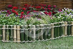 Flowers over bamboo fence