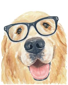 Hipster Golden Retriever