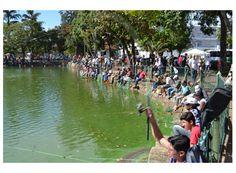 Cerca de 1.500 pessoas participam de pesca na Lagoinha http://www.passosmgonline.com/index.php/2014-01-22-23-07-47/regiao/4118-cerca-de-1-500-pessoas-participam-de-pesca-na-lagoinha