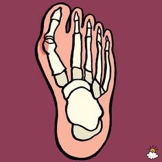 Few people realize that there are simple, at-home tricks to prevent and treat their bunions.