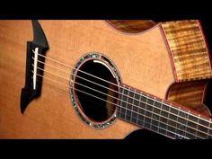 Breedlove Exotic Cm Classic Guitar - YouTube