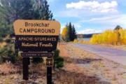Brookchar Campground is tucked on the banks of Big Lake in the White Mountains of eastern Arizona.