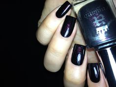 A England  Jane Eyre is a mysterious eggplant shimmer scattered through the blackest black revealing an enigmatic sparkle under direct lightin