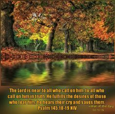 The Lord is near to all who call on him, to all who call on him in truth. He fulfills the desires of those who fear him; he hears their cry and saves them.    ~Psalm 145:18-19 NIV