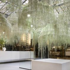 "Designed by Patrick Nadeau, the interesting fixing called the ""Rainforest"" consists of hanging domes enclosed in living plants. The French designer who has exhibited his creativity through this ingenious creation designed for Italian brand Boffi uses a kind of hanging Spanish moss called Tillandsias usneoïdes to add beauty to the installation."