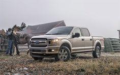 Lataa kuva Ford-F-150, ranch, 2018 autoja, Katumaasturit, USA, Ford
