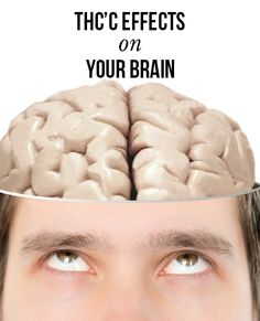 THC's effects on your brain | massroots.com