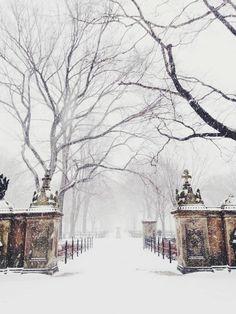 Fonds d écran hiver gratuit