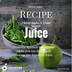 Juicernet is the one-stop-shop for all of your commercial juicer needs. Browse our products to find the right professional juicer machine for your business. Fruit Juicer, Citrus Juicer, Commercial Juicer, Vegetable Juicer, Spinach Juice, Juicer Machine, Detox Juice Recipes, Making Machine, Fruits And Vegetables