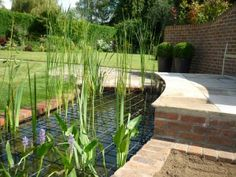 1000 images about pond on pinterest pond covers ponds for Decorative fish pond covers
