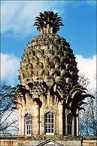 """The Dunmore Pineapple is a folly said to """"rank as the most bizarre building in Scotland."""" It is situated in Dunmore Park, approximately one kilometre northwest of Airth and the same distance south of Dunmore in the Falkirk council area, Scotland. Unusual Buildings, Beautiful Buildings, Beautiful Places, Interesting Buildings, Virginia Is For Lovers, Colonial Williamsburg, Williamsburg Virginia, Unique Architecture, Places To Go"""