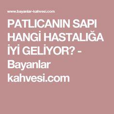 PATLICANIN SAPI HANGİ HASTALIĞA İYİ GELİYOR? - Bayanlar kahvesi.com