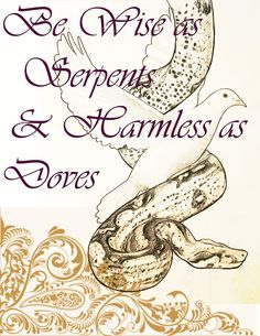 Wise as serpents and harmless as doves