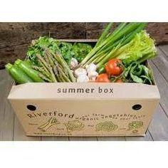 vegetable-packaging-boxes-250x250.jpg (250×250)