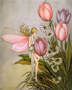 Tulip Fairy Vintage Artwork by Vintage Artwork - Rosenberry Rooms