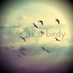 Free as a bird #quote